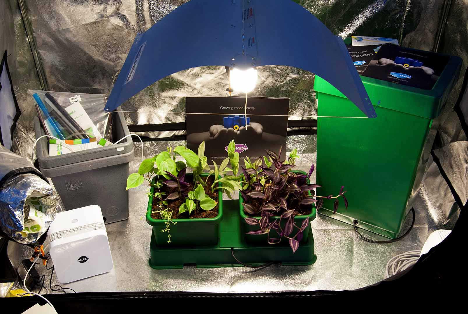 Vita verde indoor solutions grow shop